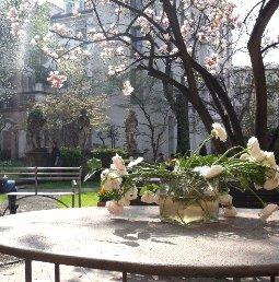 Traum Garten Interior Mailand